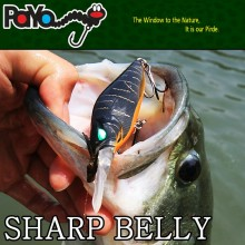 Sharp Belly Mid dive Crankbait